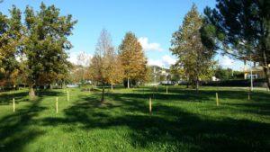 Il Parco delle Molazzette